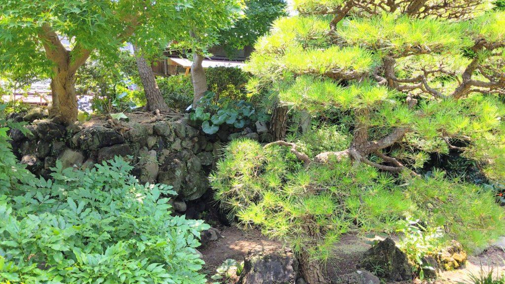相川考古館の庭
